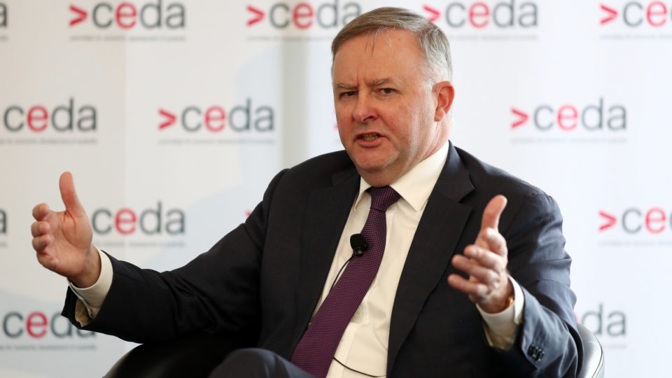Anthony Albanese wants a new government body to prepare Australia for the future of work. Photo: AAP