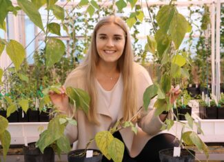 Investing in education and training for the future of Tasmanian agriculture